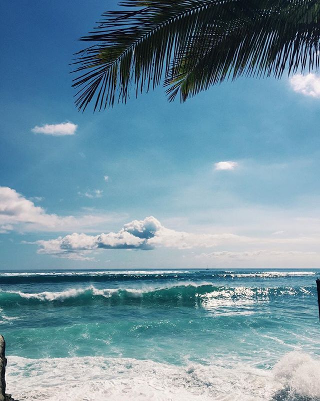 Tropical Beach And Peaceful Ocean: 397 Best Images About Ocean On Pinterest