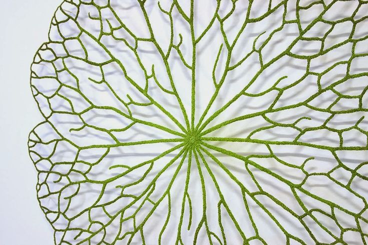 The Artwork of Meredith Woolnough: The journey of an artwork: 'Coast Pennywort' from start to finish