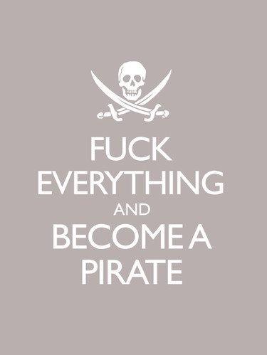 fuer die Piraten Partei Deutschland und Neuankömmlinge
