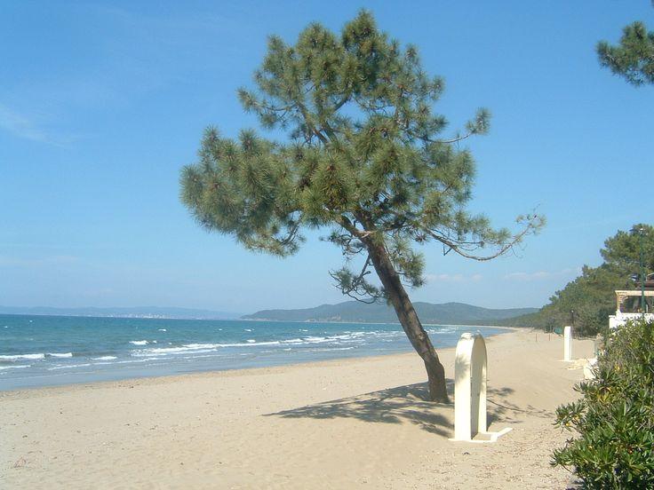 Puntala beach www.yuscanysuitsyou.com