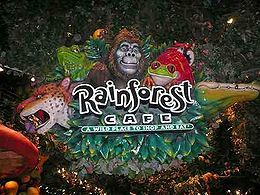 Get $10 off $40 check at Rainforest Cafe with coupon through June 30. See more here: http://www.bestfreestuffguide.com/Free_Rainforest_Cafe_Coupons