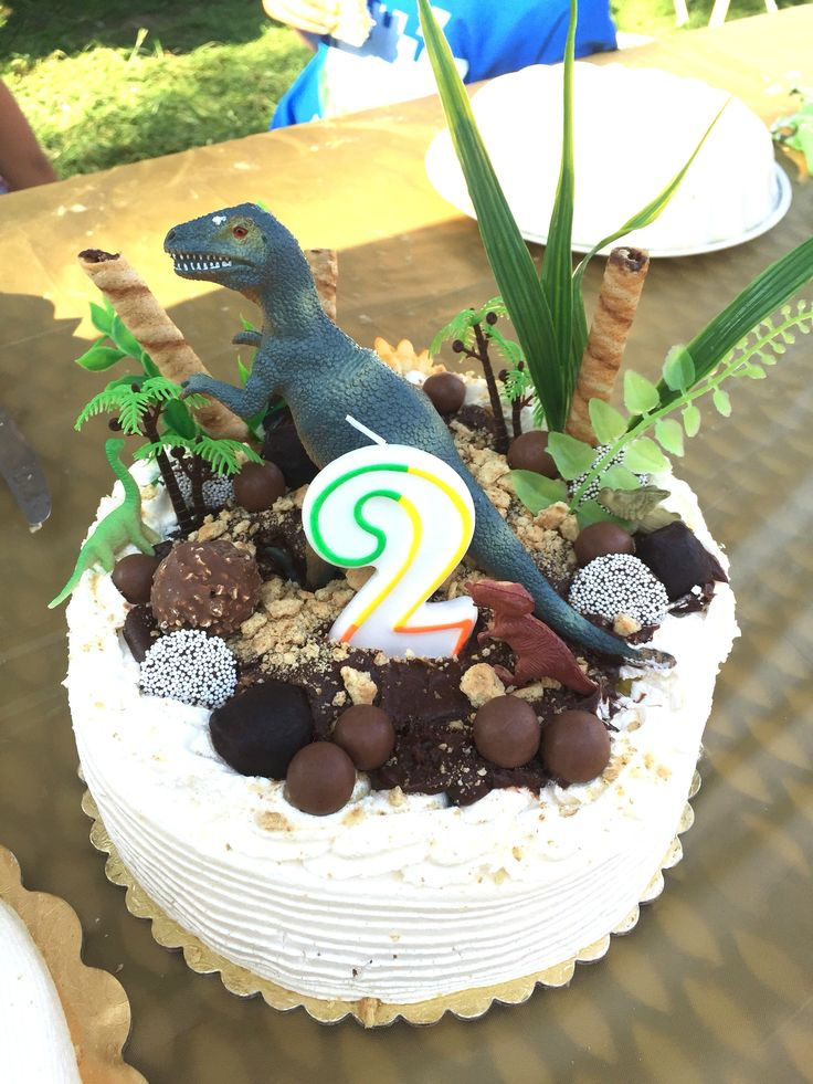 Easy DIY dinosaur cake decorations using dollar store finds: a variety of chocolates, plastic plants, and dinosaurs!