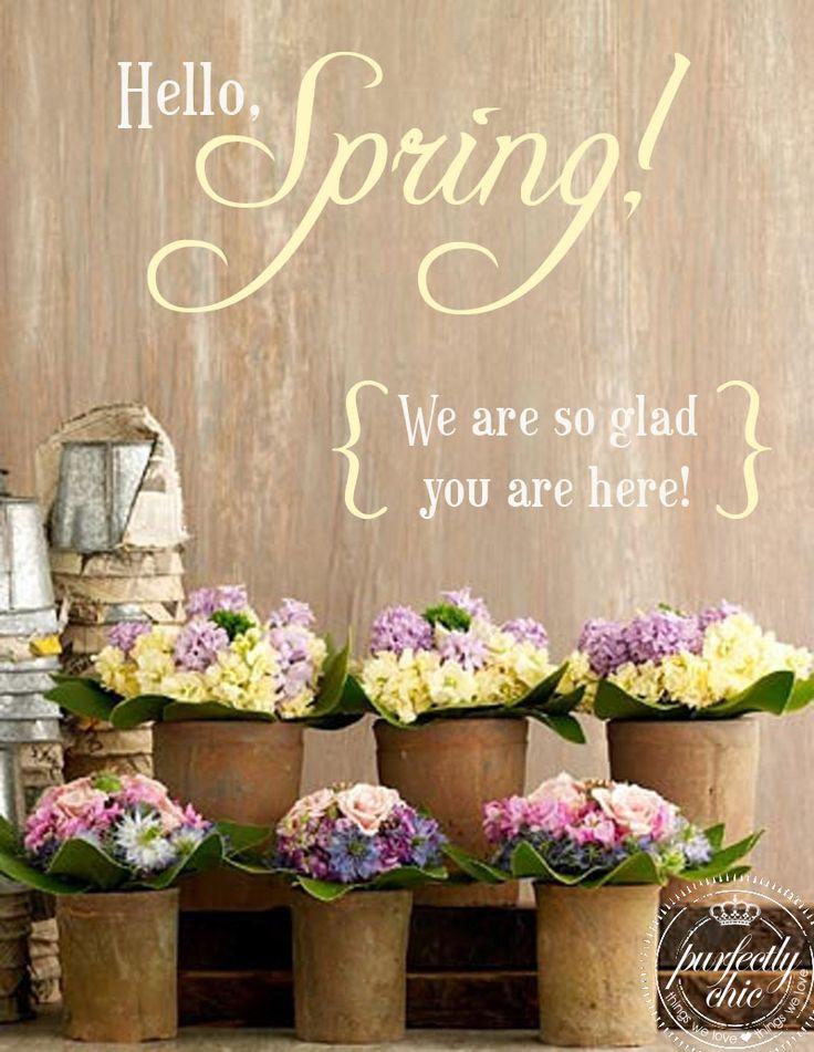 {Hello} #Spring