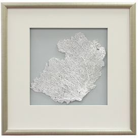 """Framed sea fan wall decor.Product: Framed wall artConstruction Material: Wood, matte, glass and sea lifeColor: Burnished silver frameDimensions: 17.5"""" H x 17.5"""" WCleaning and Care: Wipe with dry cloth"""