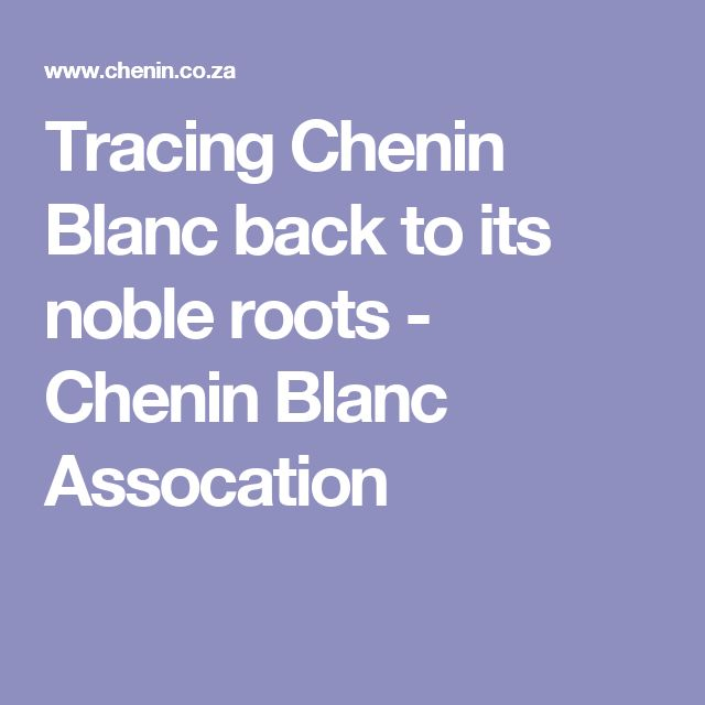 Tracing Chenin Blanc back to its noble roots - Chenin Blanc Assocation