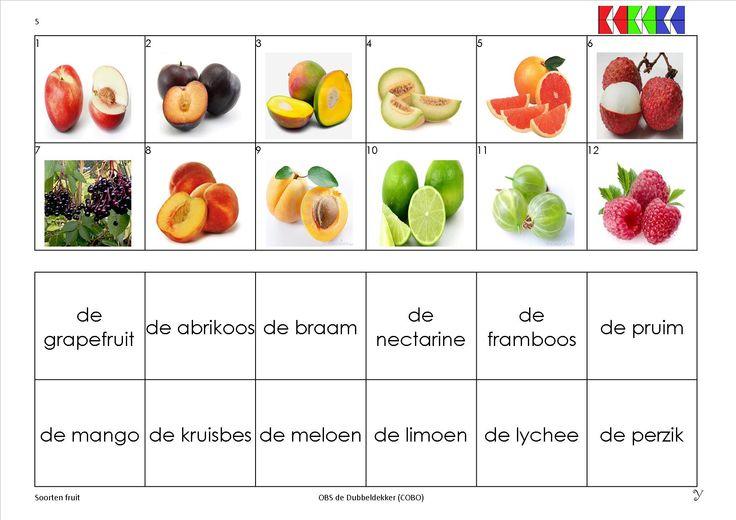 mini loco fruit 5