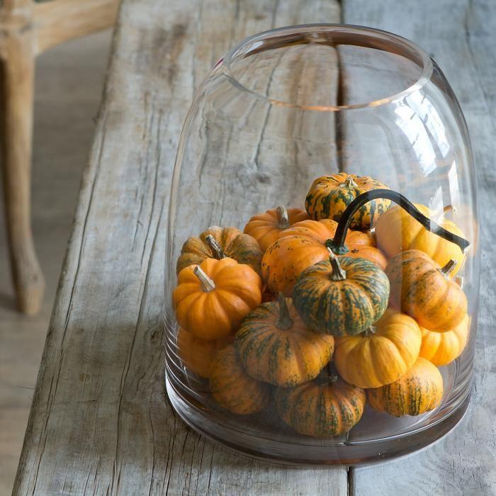 Halloween Decor: The Evolution Gardenista