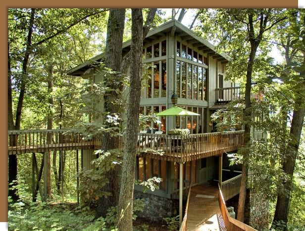 Marvelous Luxurious Treehouse In North Asheville