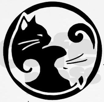Ying Yang Cats :) Black = Molly and white one is Pookie (Angel)! -AR
