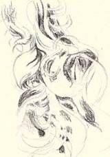 draw hair step 2