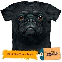 Black Pug Face - Dogs