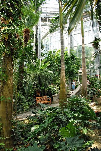Glass house conservatory 10 handpicked ideas to for Indoor botanical gardens