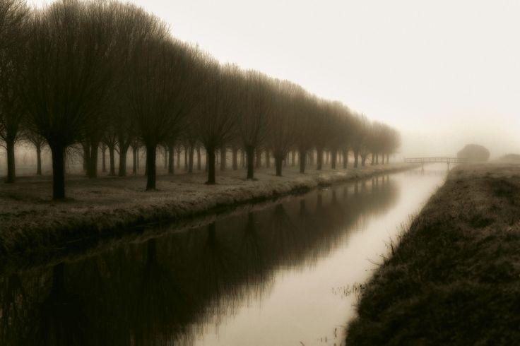 Dutch Foggy Morning by Bob Israel on 500px