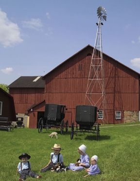 Image Detail for - Amish Stock Photography Images From SuperStock