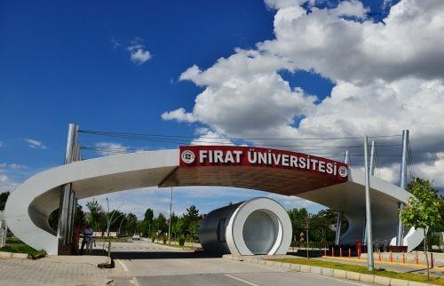 Fırat Üniversitesi 2 Akademik Personel Alacak
