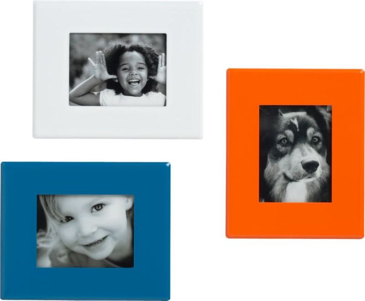 mini magnetic frames | CB2, $2 colorful and fun gift idea | Gift ...