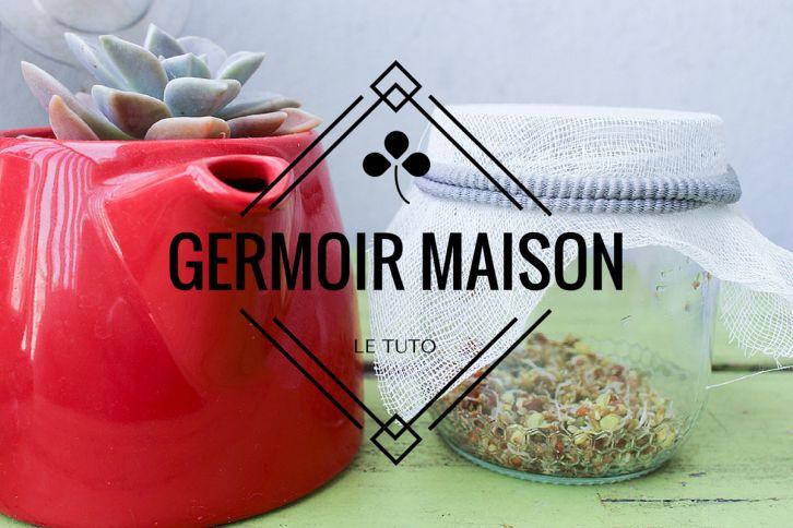 Vous souhaitez faire germer vos graines vous-même ? Découvrez comment fabriquer un germoir maison 100% récup ! C'est simple, rapide et économique :)