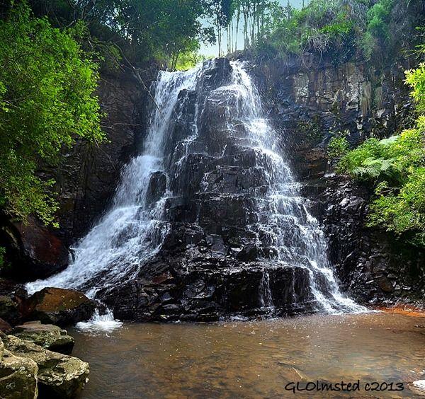 39-steps waterfall at the Hogsback Arboretum http://geogypsytraveler.com/wp-content/uploads/2013/08/09-3963-39-Steps-Waterfall-Hogsback-Arboretum-Hogsback-SA-pano-1024x962.jpg