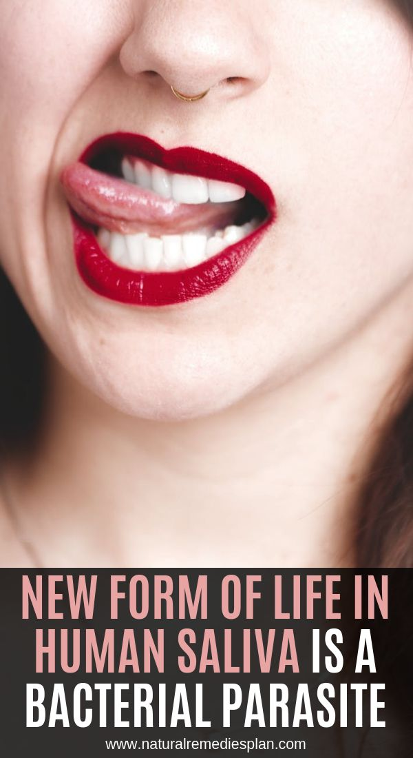 New Form of Life in Human Saliva Is a Bacterial Parasite ...