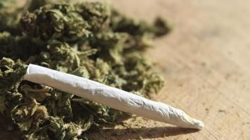 Alkohol a cigarety jsou mnohem nebezpečnější než marihuana, říká významný chemik Lumír Hanuš a dodává, že konopí léčí zejména symptomy, takže pacient se cítí zdráv, i když nemoc pokračuje.