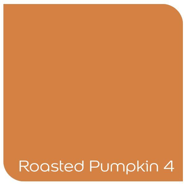 Roasted Punkin 4 - what a perfect colour for an autumn/winter palette. Click the colour to order a tester online!