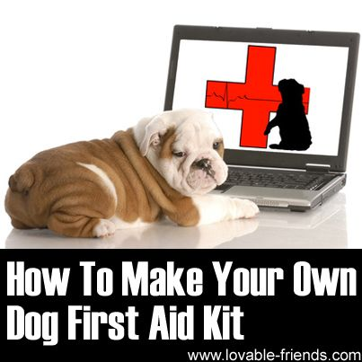 How To Make Your Own Dog First Aid Kit - Lovable Friends