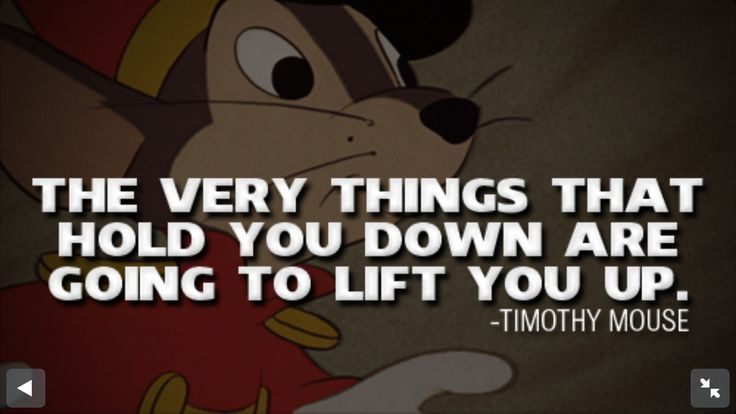 Pinterest Disney Quotes: 1000+ Dumbo Quotes On Pinterest