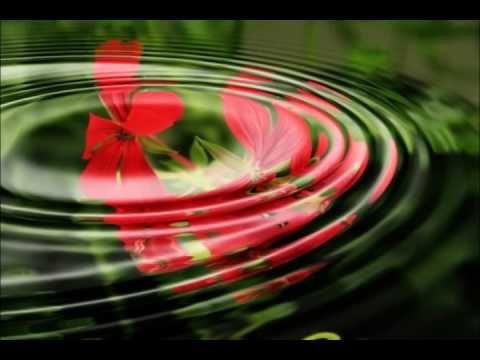 SONIDOS DE AGUA Y PAJAROS - (Dejar la Mente en Blanco - Meditar) - A 432 HZ - YouTube