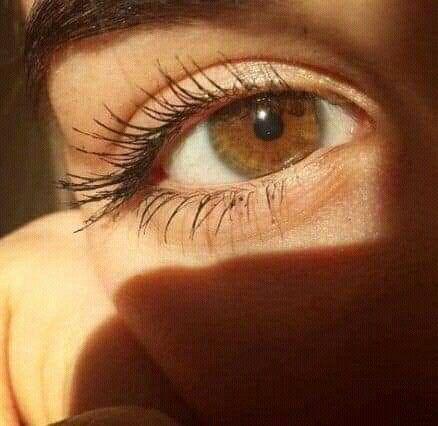 Catalina Adli Kullanicinin Eyes Panosundaki Pin 2020 Kahverengi Gozler Fotografcilik Tuyolari Fotografcilik