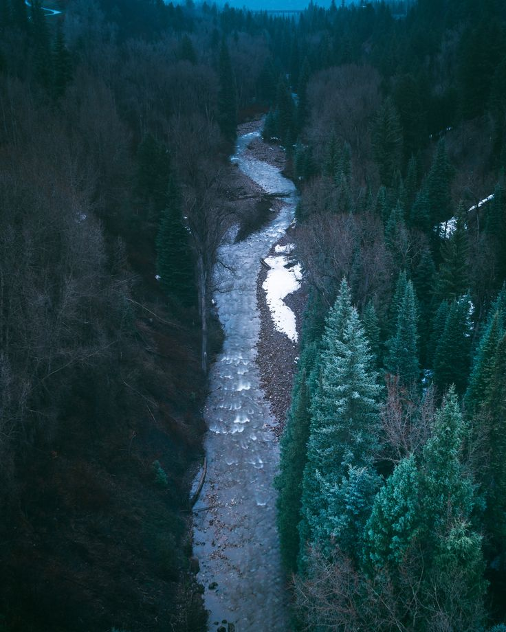 [#HD Wallpaper] A small river in a coniferous forest in Aspen - #4KResolution #DisplayResolution #ETOAS End Times of a Sunshine, #Instrumental Smartphone, Chillhop Music, Ultra-high-definition television  - Photo by Hunter Bryant @hunterbryant (unsplash)  - Follow #extremegentleman for more pics like this!