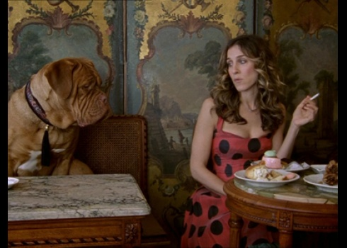Dogs and cigs and pastries...only in Paris