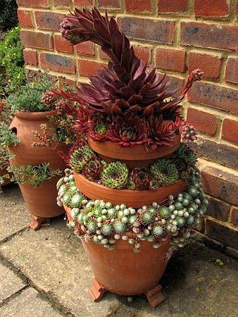 Layered succulent pot