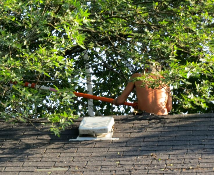 17 Best Images About Bare Naked Roofer On Pinterest Chow