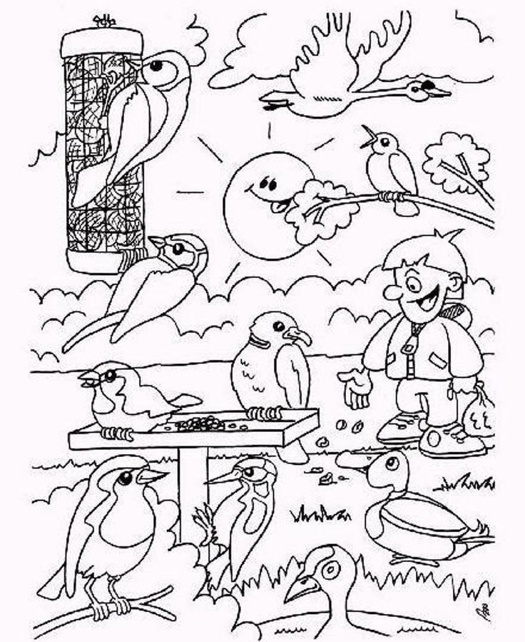 DIY Winter Kids; Coloring Page; Birds during Winter Time Winter Kleurplaat; Vogels in Wintertijd