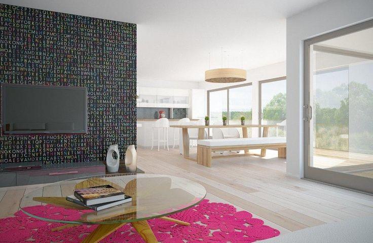 house design modern-house-ch224 2