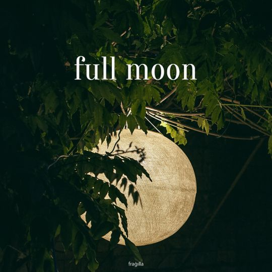 Make your moments special with brightness of full-moon in several colour variations. | fragilla.com