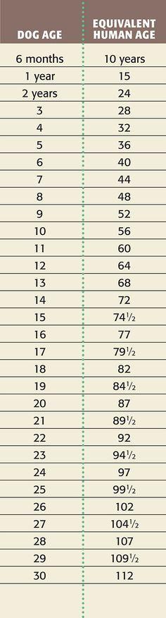 The  Best Growth Chart Calculator Ideas On