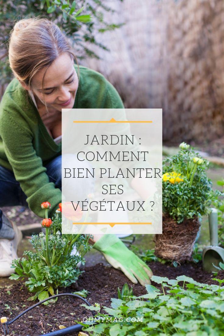 Jardin Comment Bien Planter Ses Vegetaux Video Jardins