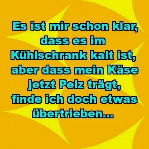 clips #hilarious #liebe #sprüchezumnachdenken #lachflash #epic #funny