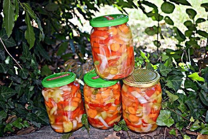 Salata-de-gogonele-cu-ardei-si-morcov-in-otet-la-rece-pofta-buna-cu-gina-bradea (9)