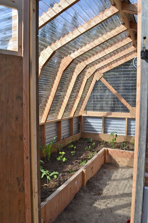 Repair a rotting shed roof through turning it right into a greenhouse! Sensible!