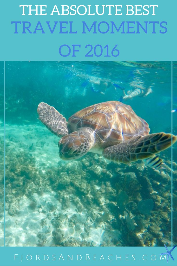10 Best Travel Moments of 2016