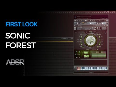 Sonic Forest Kontakt Instrument - First Look - YouTube