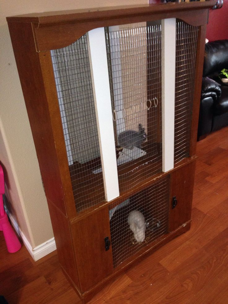 19 best amazing pet homes images on pinterest bunnies for Amazing rabbit cages