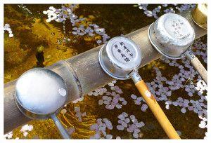 "Japan Tourism: visit Shikoku, the ""Tibet of Japan"" | First Time Foreigner"