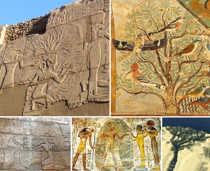 L'albero della vita nella storia dell'arte - DidatticarteBlog