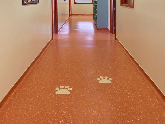 nora MOB and Clinics: Corridor