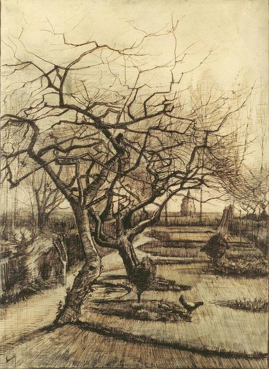 Parsonage Garden (drawing, pen, heightened with white) 1884, Vincent van Gogh