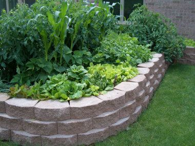 stone wall for raised garden bed