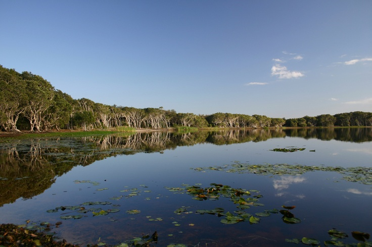 Tea Tree Lake